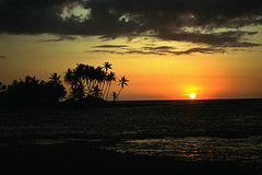 Up to 58% Off: Hawaii 12-Night Cruise