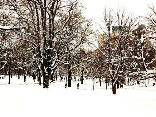 Winter Discounts In Boston