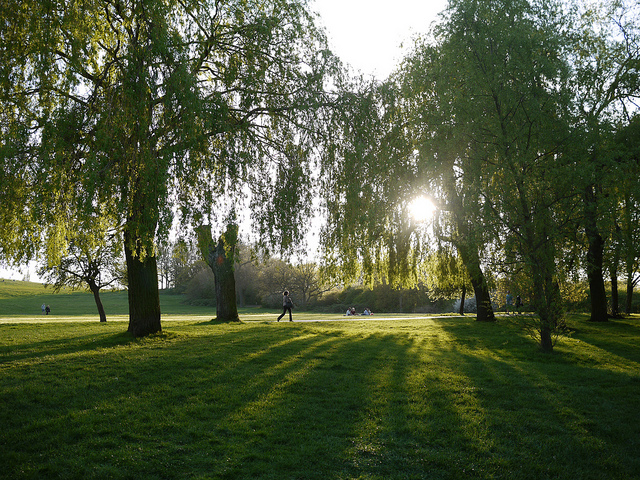 5 Serene Parks in Totally Chaotic Cities