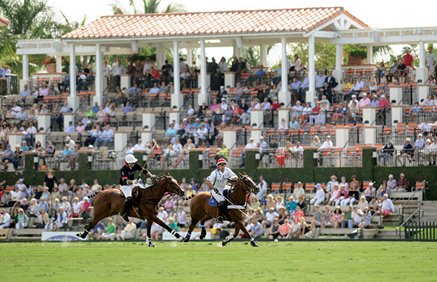 Polo for Pennies (Not Just for the Rich & Famous)