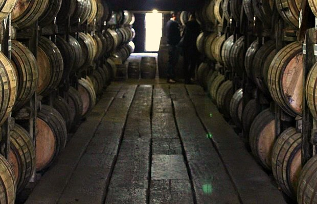 How to: (Safely) Tour Kentucky's Bourbon Trail by Bicycle