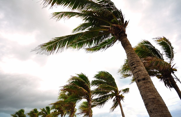 How to Help With Hurricane Relief Efforts