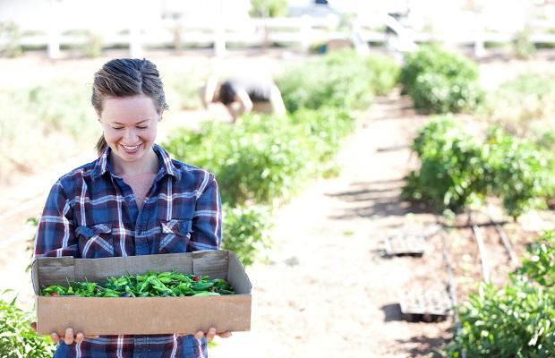 3 Urban Farm Destinations That Will Surprise You