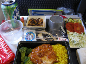 Flies, Cockroaches, and Mice Found in Airline Caterers' Kitchens