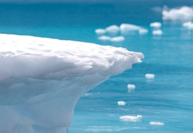 Get a $1,400 Flight Credit for Luxe Antarctica Sailings & Save Up to 20%