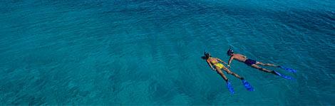 Aruba Spotlight