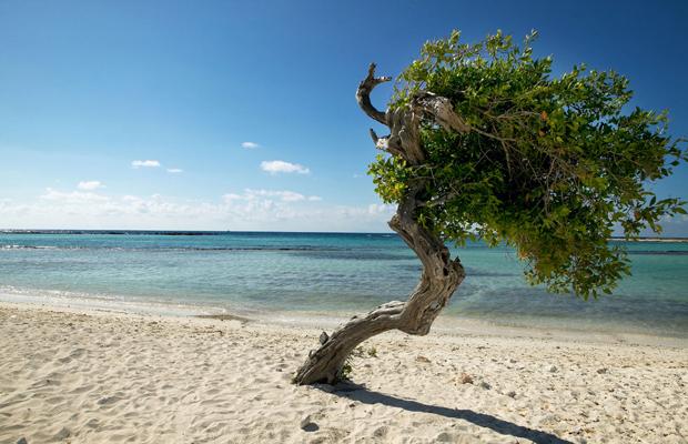 Top 5 Caribbean Islands For Avoiding Hurricanes