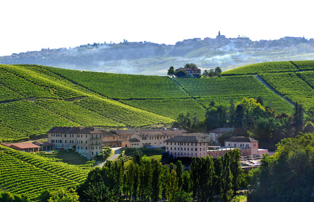 Thirsty Thursday: Things to do in the Barolo Wine Region