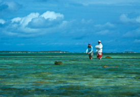 Belize Beachfront Fishing and Diving Lodge, 45% Off