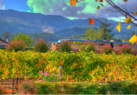 Wine and Dine on the Napa Valley Gay Train