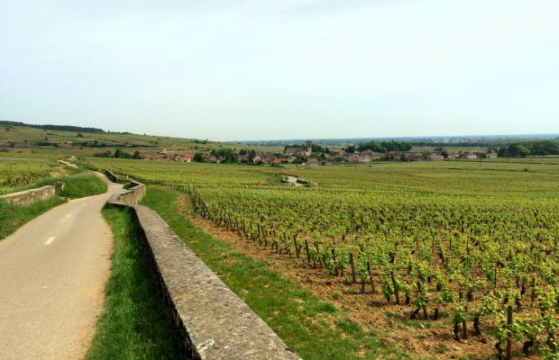 6 Things to Do in Beaune, Burgundy (By France's Newest UNESCO Site)