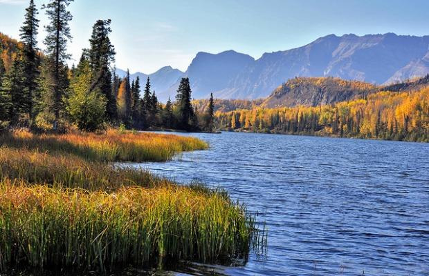 5 Reasons to Visit Alaska in Fall
