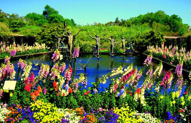 6 Botanical Gardens to Visit This Spring