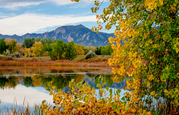 7 Surprising Destinations for Fall Foliage Trips
