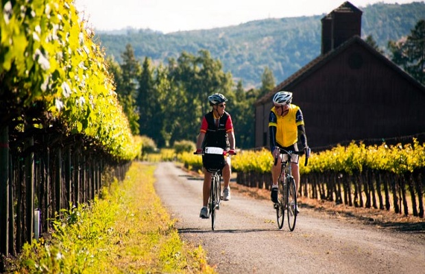 How to: Cycle through Wine Country