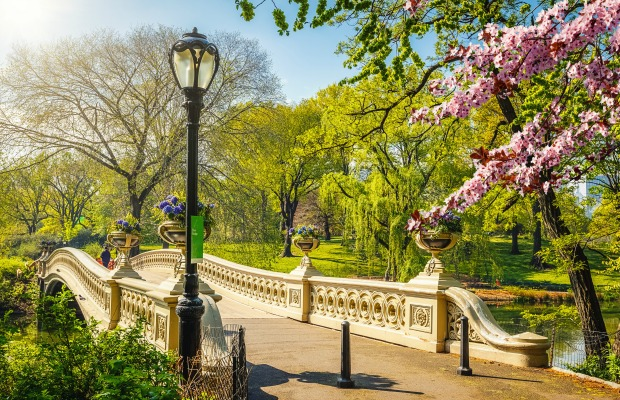 6 Spring Activities in New York Under $45