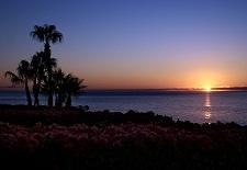 $350+: Luxe Cabo San Lucas Beach Resort & Club; Save $200/Nt