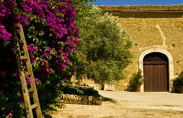 3 Gorgeous Places for Wine Tasting in Sicily