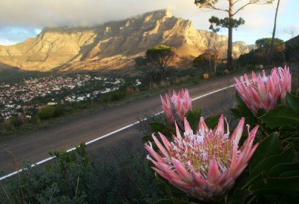 Nine-Day Luxury Package to Cape Town Pride