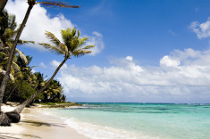 Cayman Islands Family Summer Discounts from $145/Night