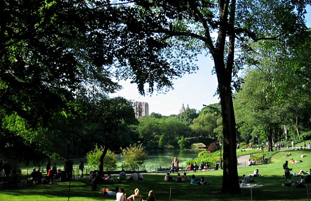 How to: Plan the Perfect Picnic in Central Park