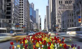 Top Ten Summer Getaways: Chicago from $159