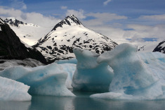 Receive a Free Flip Mino Camcorder w/Alaska Cruise