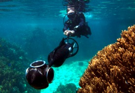 Virtual Dive in the Great Barrier Reef