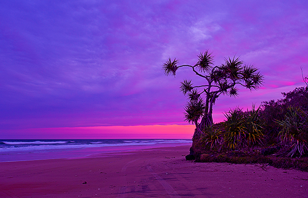 What to Do on Fraser Island