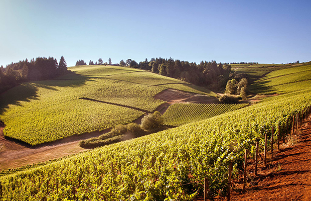 5 Fall Destinations for Beer, Wine & Spirits Lovers