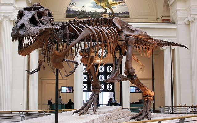 """9 Dino Destinations to Whet Your Appetite for """"Jurassic World"""""""
