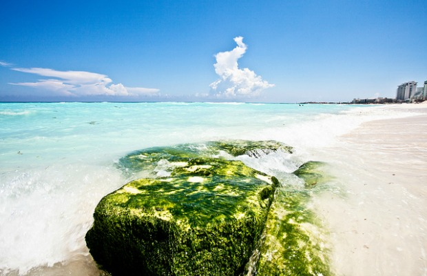 Cancun: Not Just For Spring Breakers