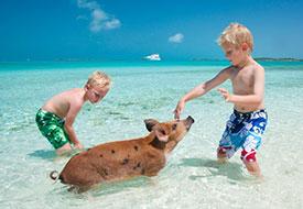 Smart Family Pick: Bahamas Fowl Cay Resort
