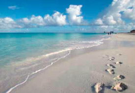 Deals and Freebies in Aruba