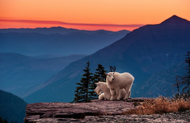 How to: Take Stunning National Park Photos