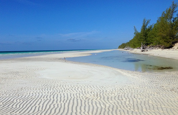 Forget the Casinos and Mega-resorts: 7 Ways to Enjoy a Relaxing Nature Retreat in the Bahamas