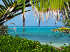 Grand Cayman Fare Sale from NYC and Florida from $166
