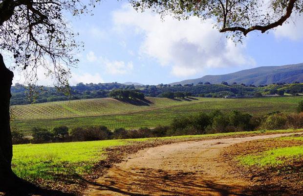5 California Wineries, 5 Beautiful Tasting Rooms