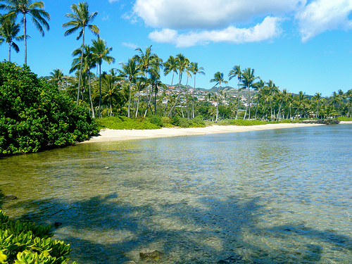 Maui and Oahu Fares from the West Coast from $322