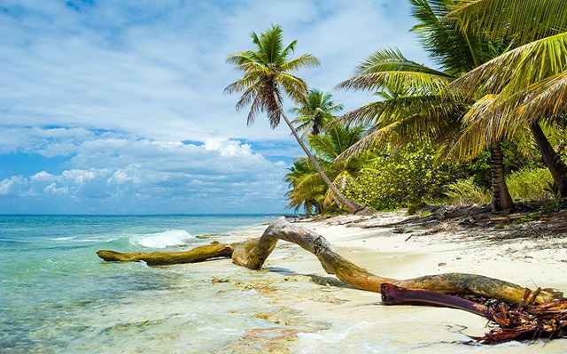 5 Day Excursions from Punta Cana (Under $155) Worth Taking