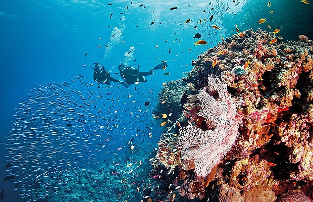New, Affordable Great Barrier Reef Getaways Courtesy of Jean-Michel Cousteau