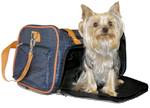 Jet with Your Pet? You Bet, with JetBlue's New JetPaws Program