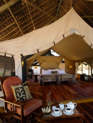 Exclusive for ShermansTravel Readers: 32% Off Southern Tanzania Safaris
