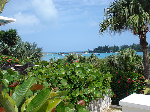 Up to 80% off Bermuda Cruise