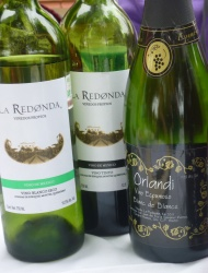 A Vine Grows in Mexico: Sampling Mexican Wines at La Redonda Vineyards