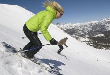 $139+: Ski and Stay at Mammoth Mountain