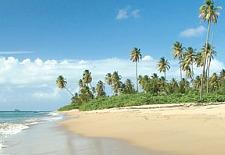 Nevis Island Romance Package; $386/Nt Per Couple