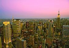 New York City Spotlight
