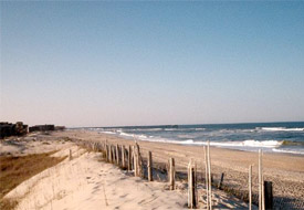 One Last Hurrah: Road Tripping NC's Outer Banks In The Fall