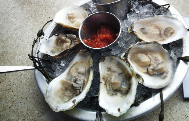 Beyond the Lobster: Food Finds in Cape Cod